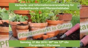 Ankündigung Pflanzenmarkt in Gutau