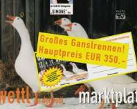 Ankündigung Martini-Markt in Zwettl a. d. Rodl