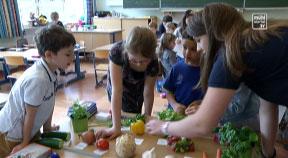 Schulprojekt HBLA Elmberg - Volksschule Helfenberg