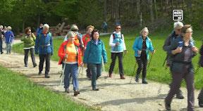 Pilgern am Granitpilgerwanderweg