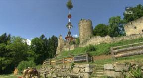 Burgruine Prandegg in Schönau im Mühlkreis