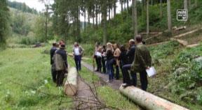 Forst- und Holzrallye durchs Mühlviertel