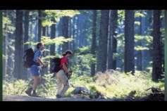 Ankündigung Eröffnung Moorwaldweg Bad Leonfelden