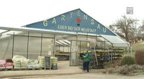 Blumen und Pflanzerl bei Gartenbau Eder in Kefermarkt