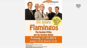 Ankündigung 50 Jahre Flamingos