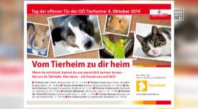 Tag der offenen Tierheime am 4.10.2014