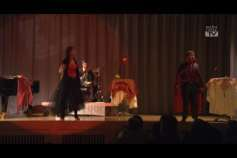 """Night of Musical"" im Centro Rohrbach"