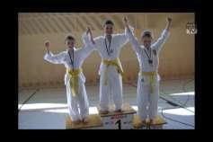 Erfolge Taekwondo Freistadt