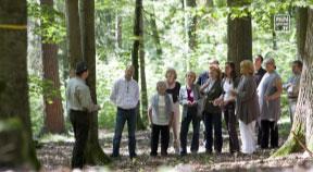 Gräber in freier Natur – neuer FriedWald-Standort in Clam