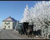 Ankündigung Adventfahrten bei der Mühlviertler Pferdeeisenbahn in Kerschbaum