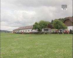 Oldtimertraktorausfahrt u. Mostkost in Gutau